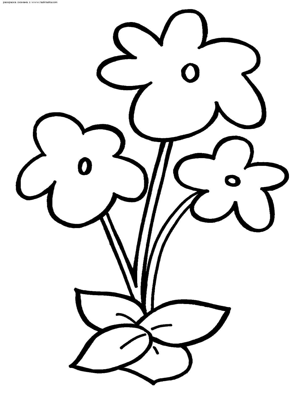Раскраска Цветы | Раскраски цветов для маленьких детей