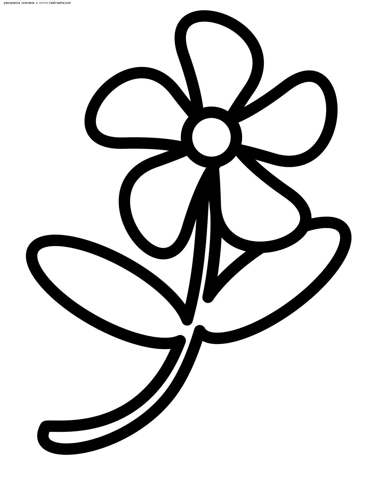 Раскраска Цветок | Раскраски цветов для маленьких детей
