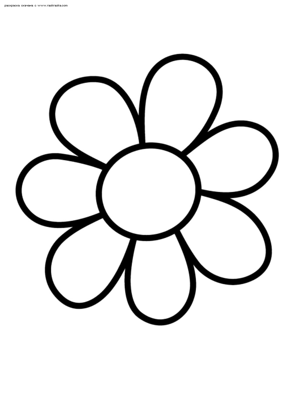 Раскраска Цветок. Раскраска цветок