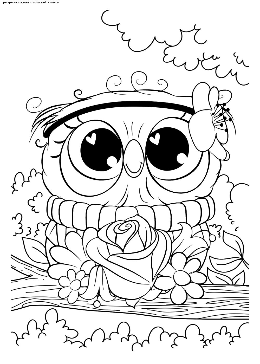 Раскраска Нарядная сова | Раскраски няшных животных. Милые ...