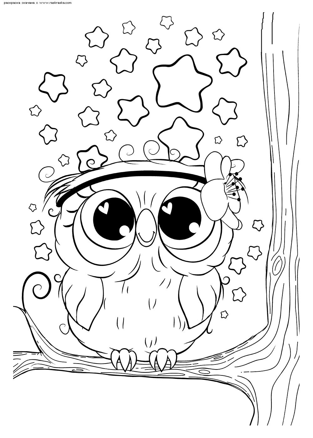Раскраска Совенок на ветке | Раскраски няшных животных ...