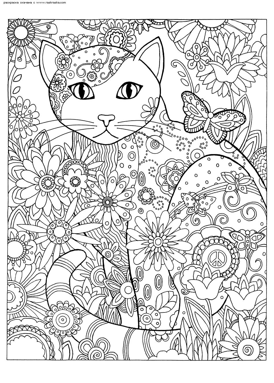 Раскраска Кошка в цветах. Раскраска кошка, антистресс