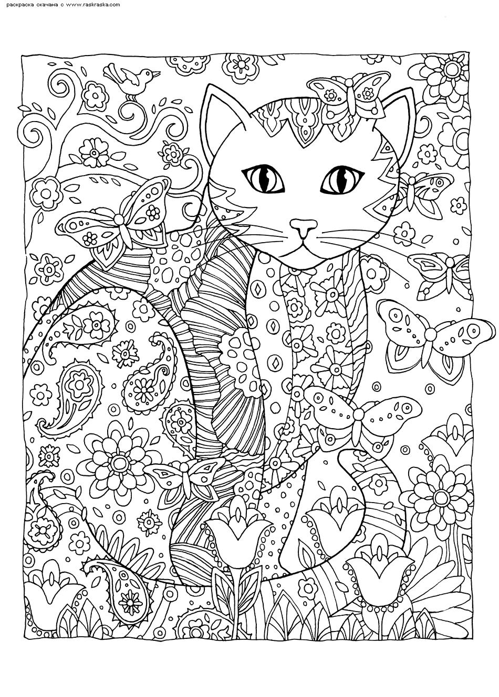 Раскраска Кошка и бабочки | Раскраски антистресс Кошки ...