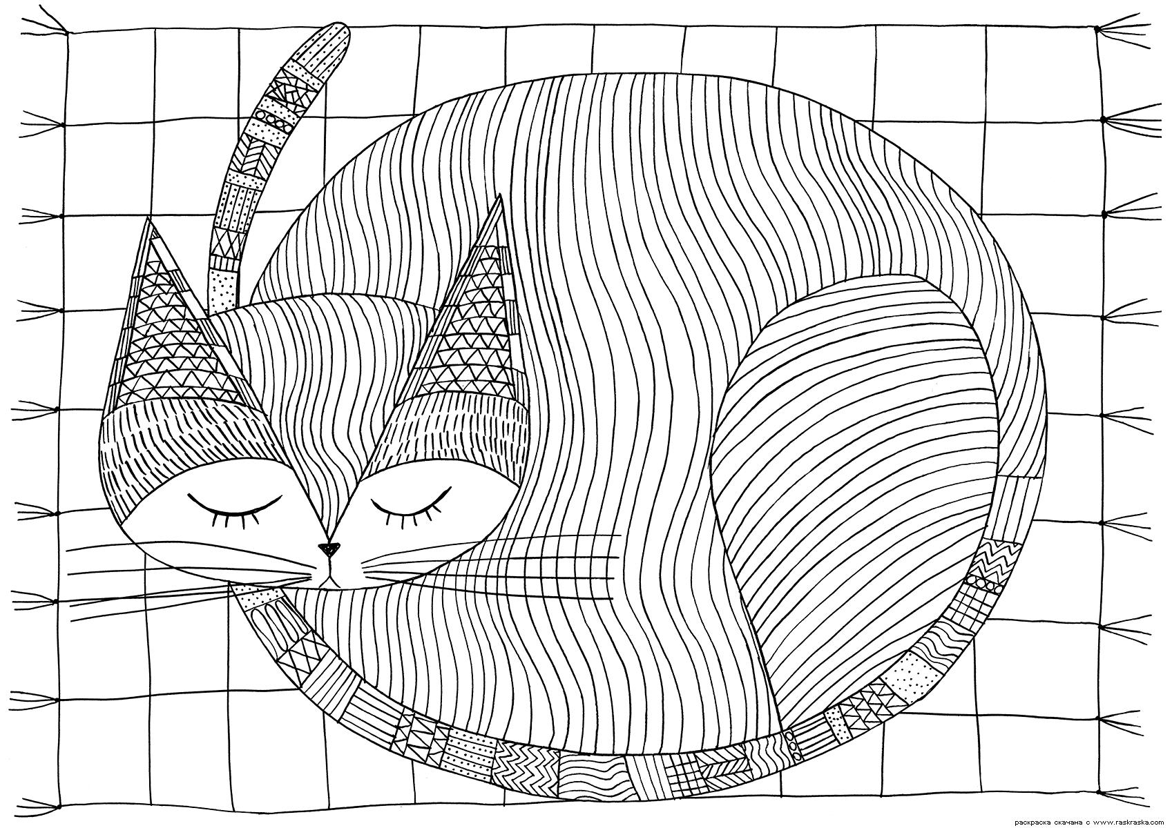 Раскраска Спящая кошка. Раскраска кот, кошка, антистресс