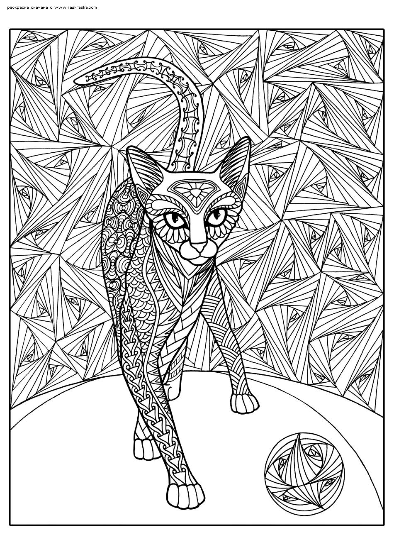 Раскраска Кот играет с мячиком. Раскраска кот, кошка, антистресс