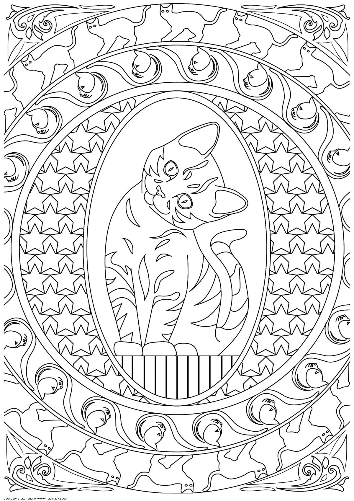 Раскраска Котенок | Раскраски антистресс Кошки. Сложные ...