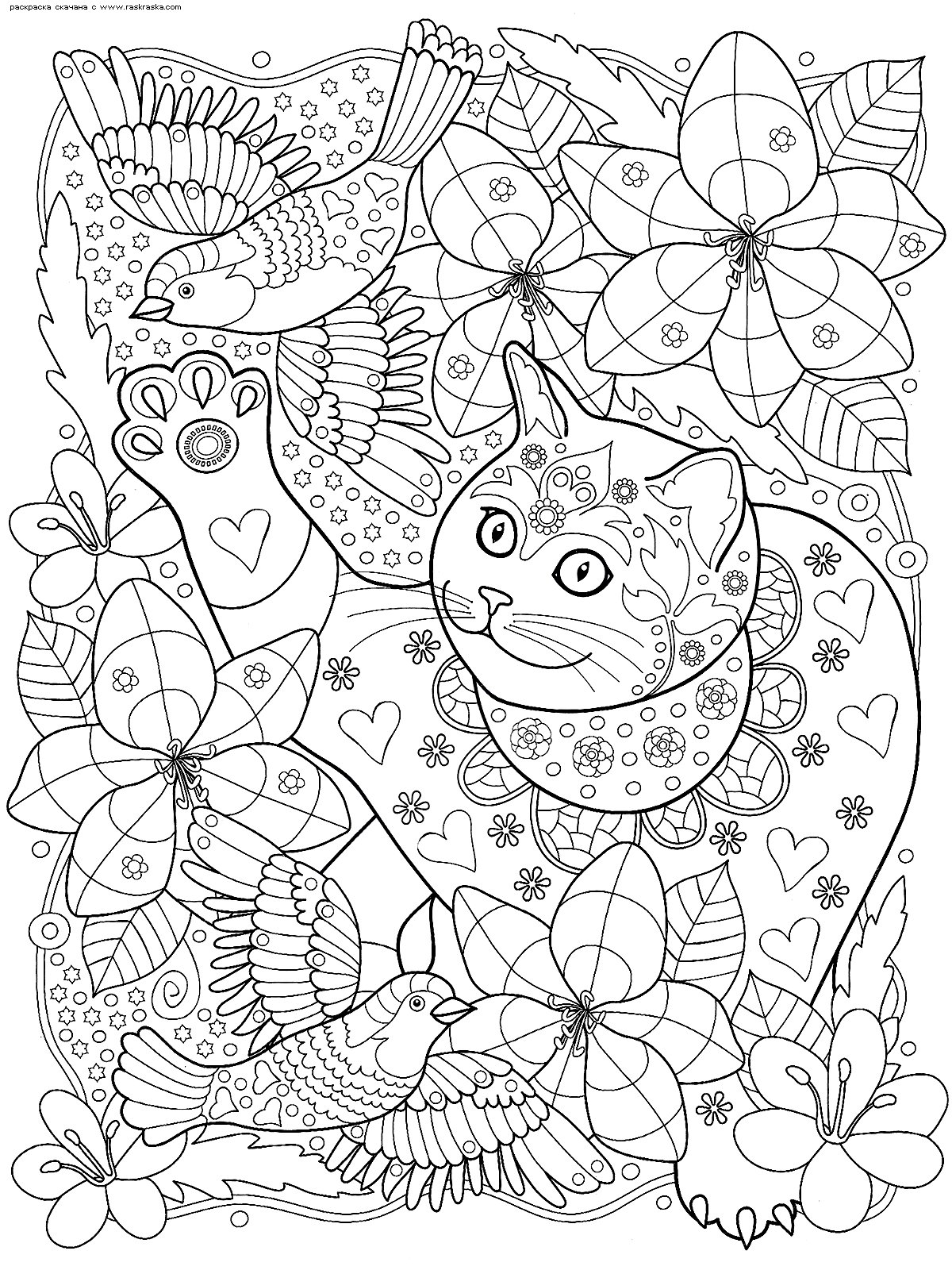 Раскраска Кот следит за птицами | Раскраски антистресс ...