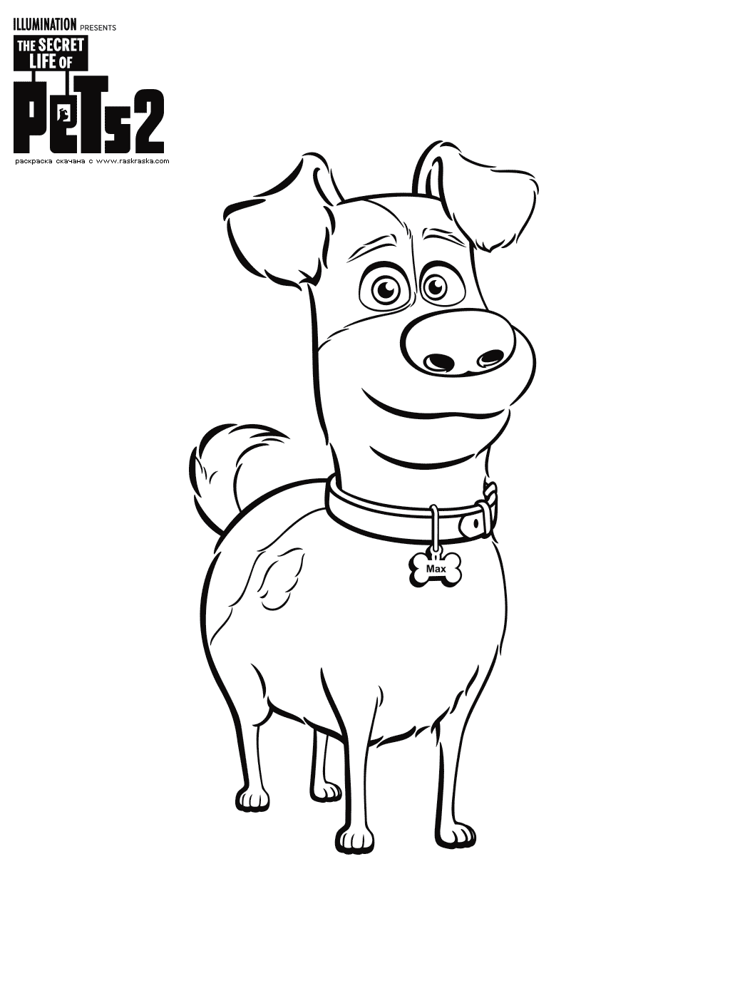 Раскраска Макс. Раскраска Собака, щенок, домашнее животное