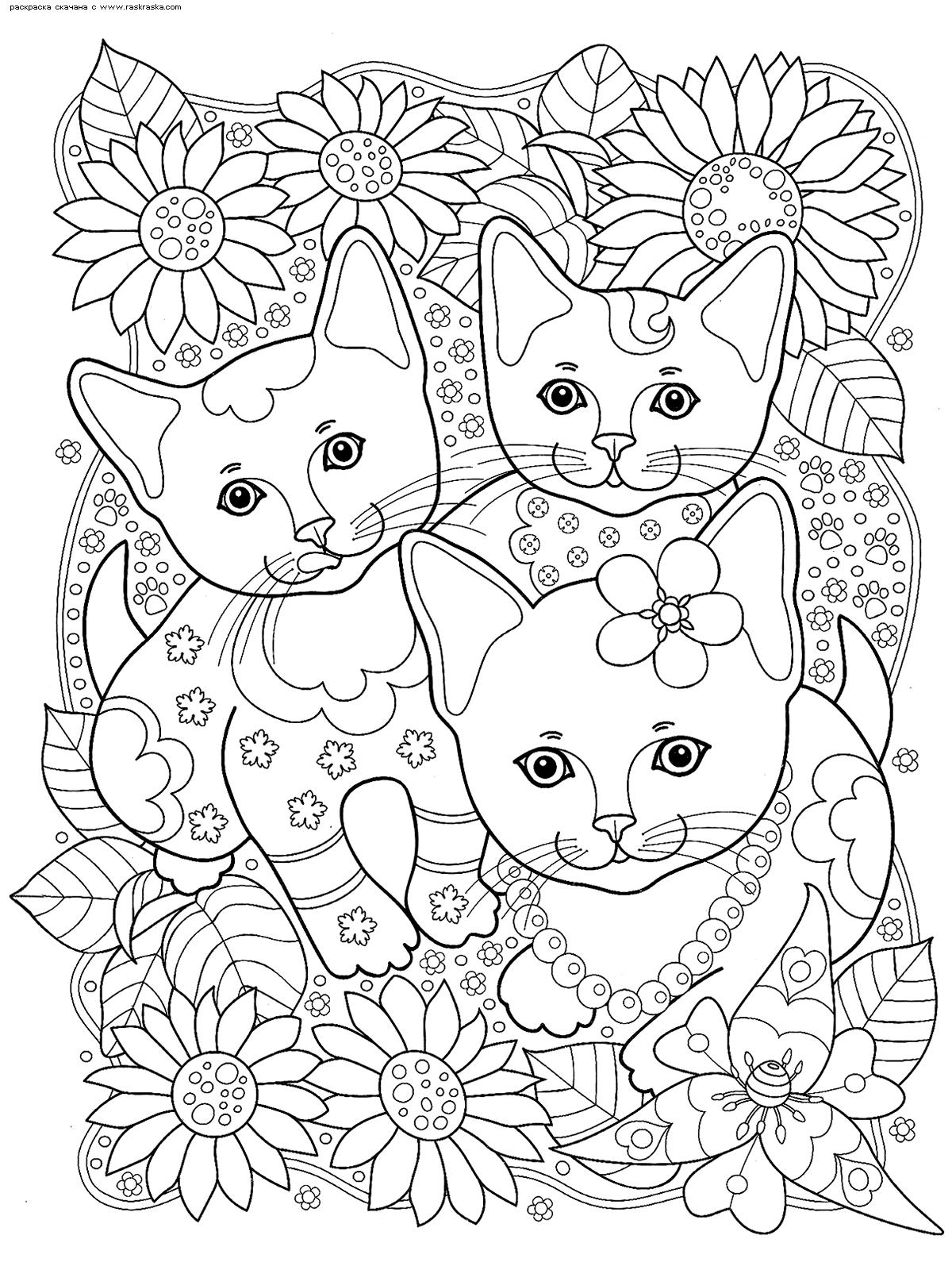 Раскраска Котята в саду | Раскраски антистресс Кошки ...