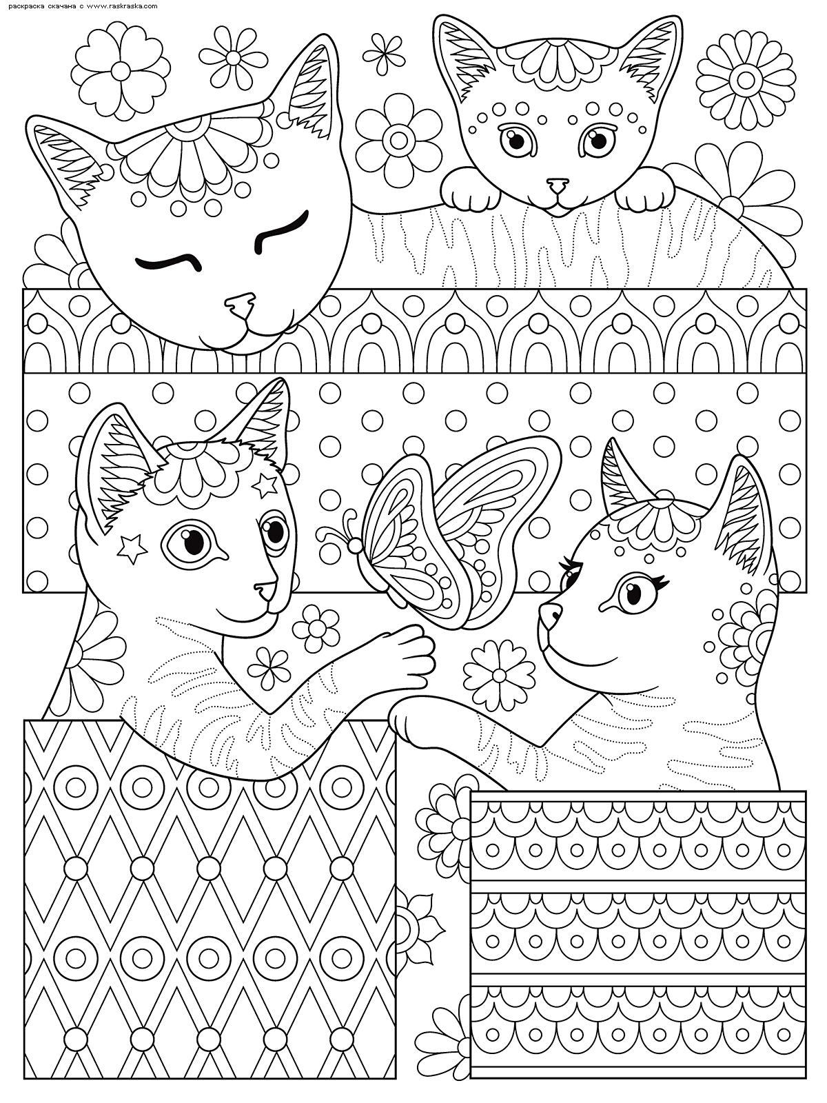 Раскраска Коты в коробках. Раскраска кот, антистресс