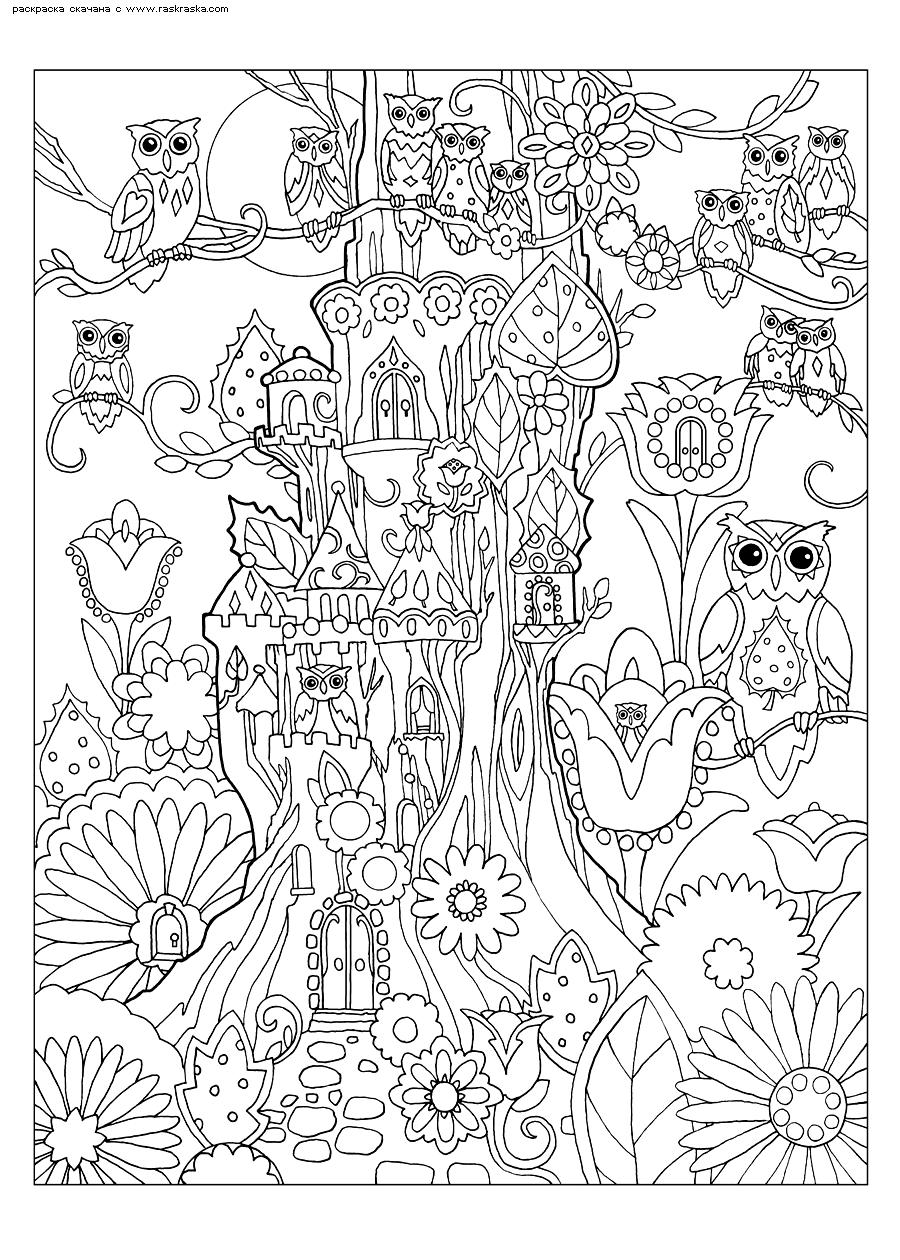 Раскраска Домик на дереве. Раскраска совы, антистресс