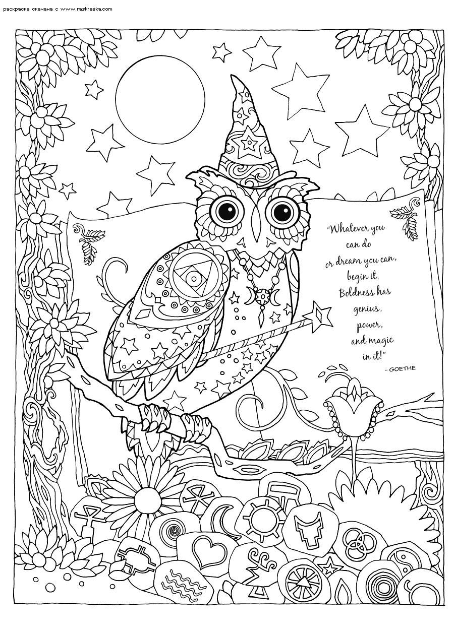 Раскраска Сова-чародей | Раскраски антистресс Совы ...