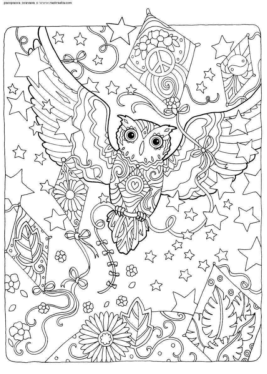 Раскраска Полет воздушного змея. Раскраска сова, антистресс