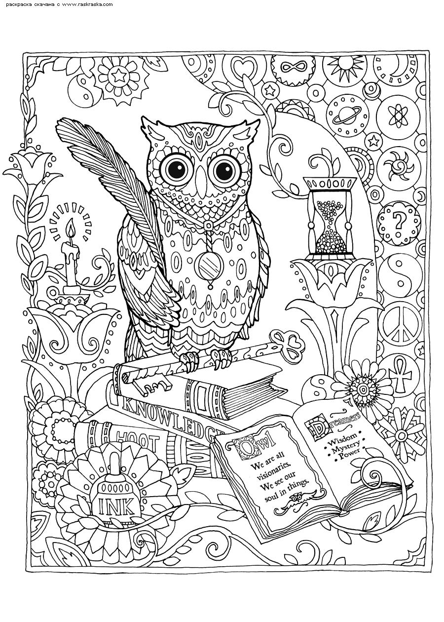 Раскраска Библиотека | Раскраски антистресс Совы. Сложные ...