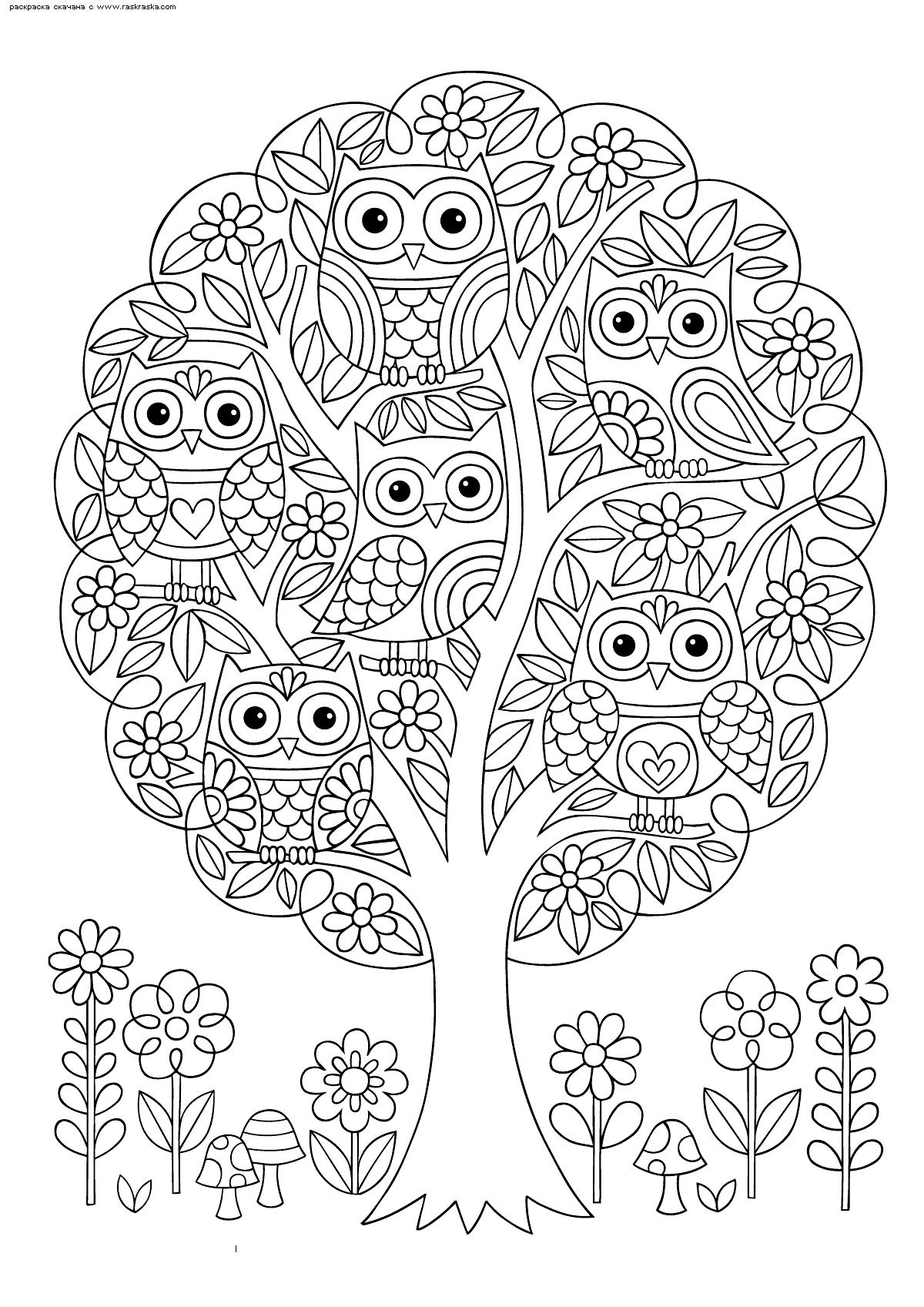 Раскраска Совы на дереве | Раскраски антистресс Совы ...