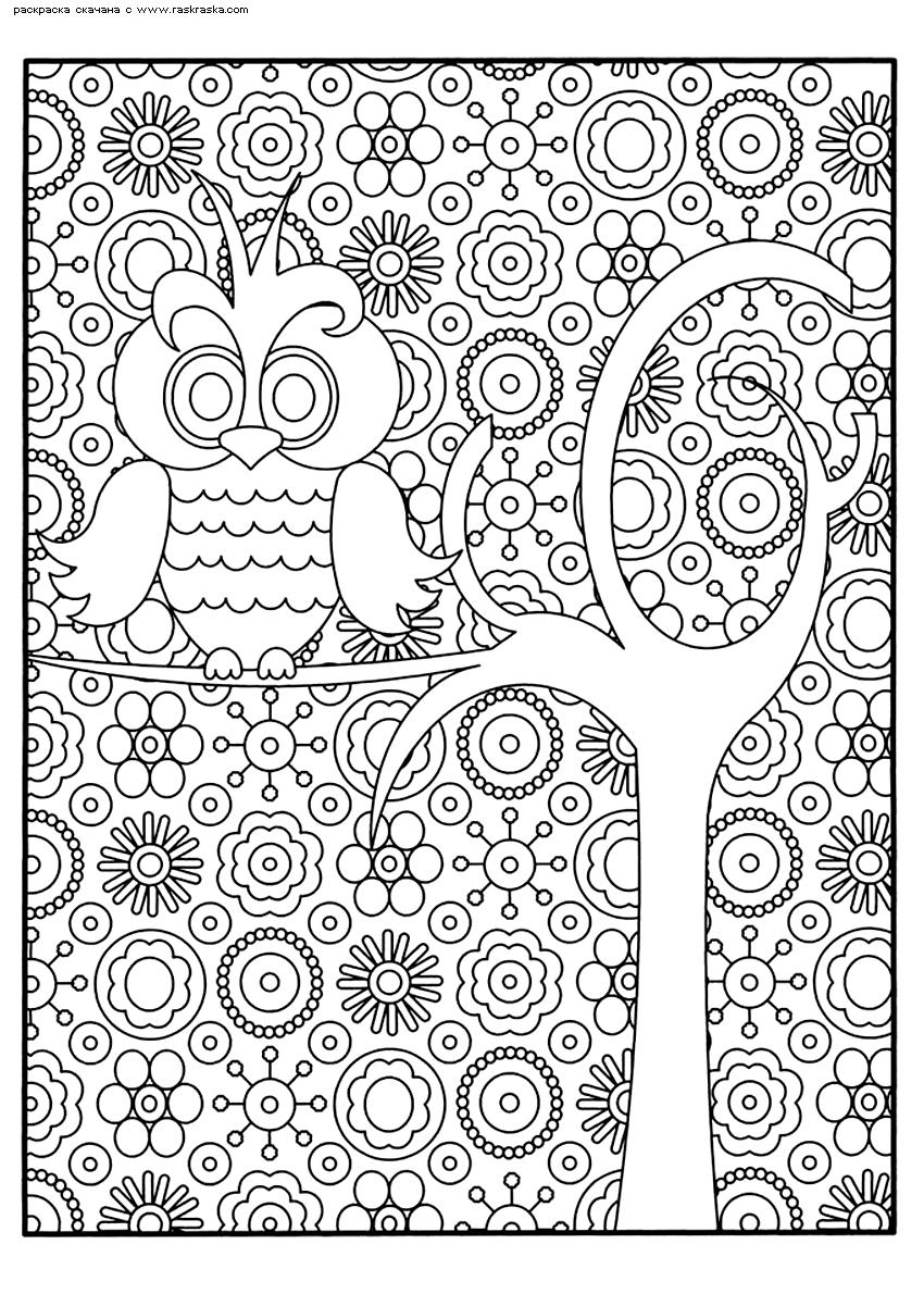 Раскраска Сова на дереве | Раскраски антистресс Совы ...