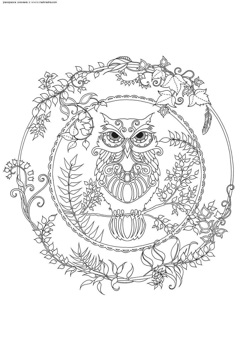 Раскраска Сова мандала | Раскраски антистресс Совы ...