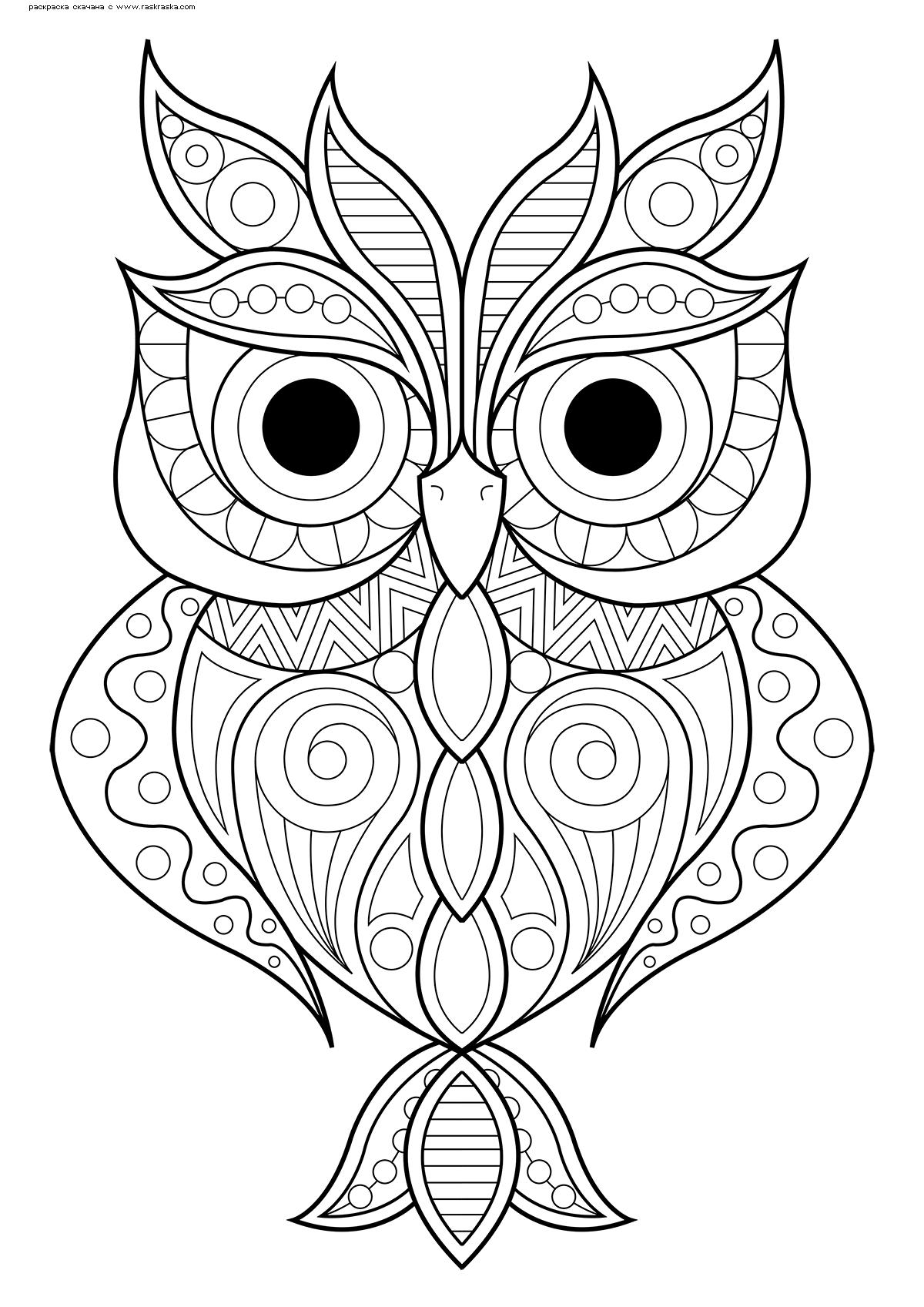Раскраска Красивая сова | Раскраски антистресс Совы ...