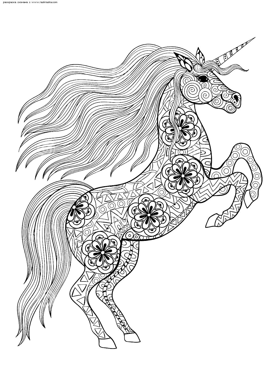 Раскраска Единорог. Раскраска единорог, антистресс