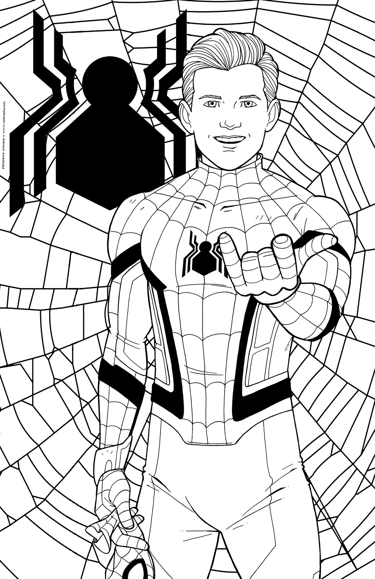 Раскраска Человек-паук. Раскраска Персонаж Marvel Comics, супергерой, Питер Паркер