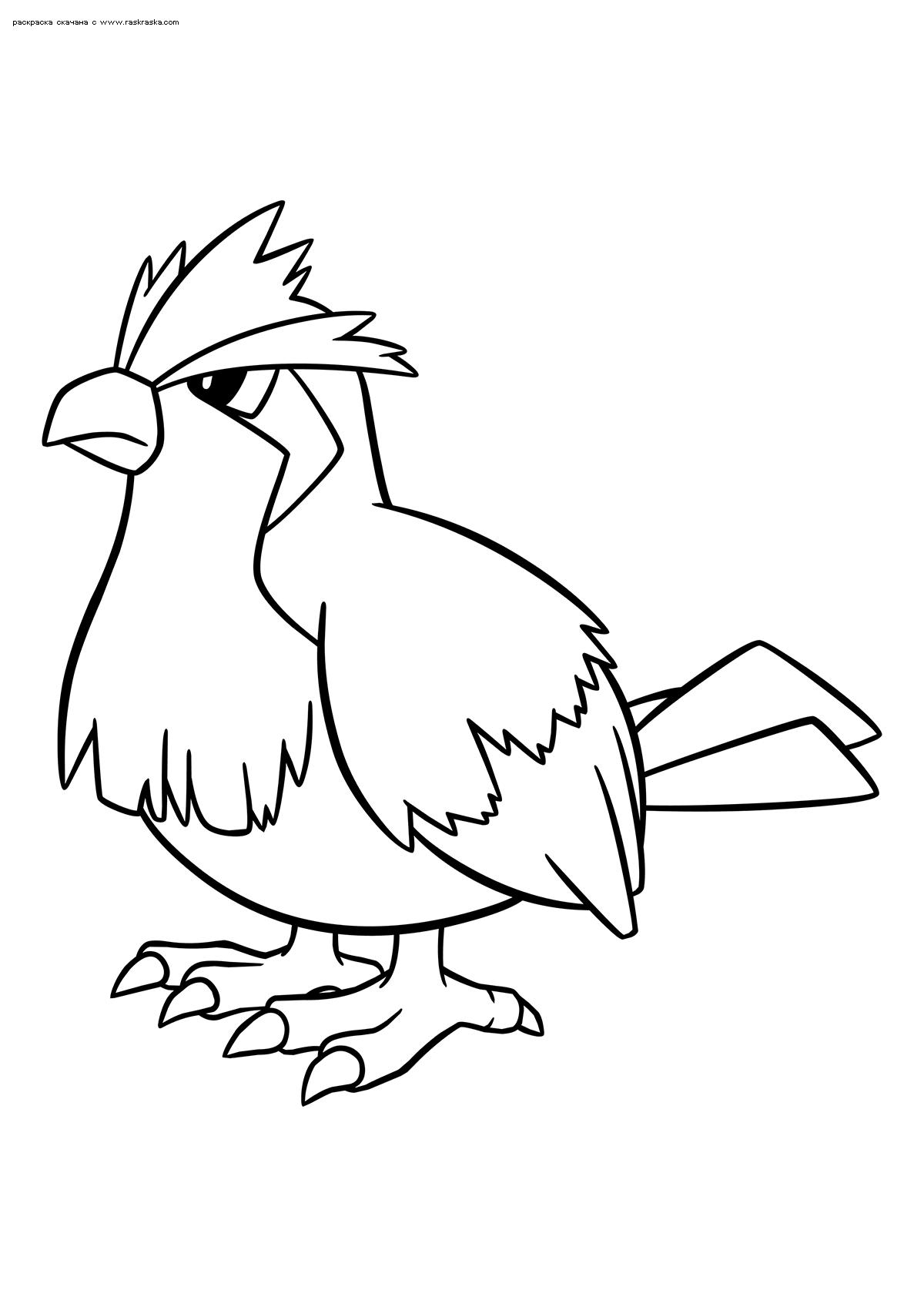Раскраска Покемон Пиджи (Pidgey) | Раскраски эволюция ...