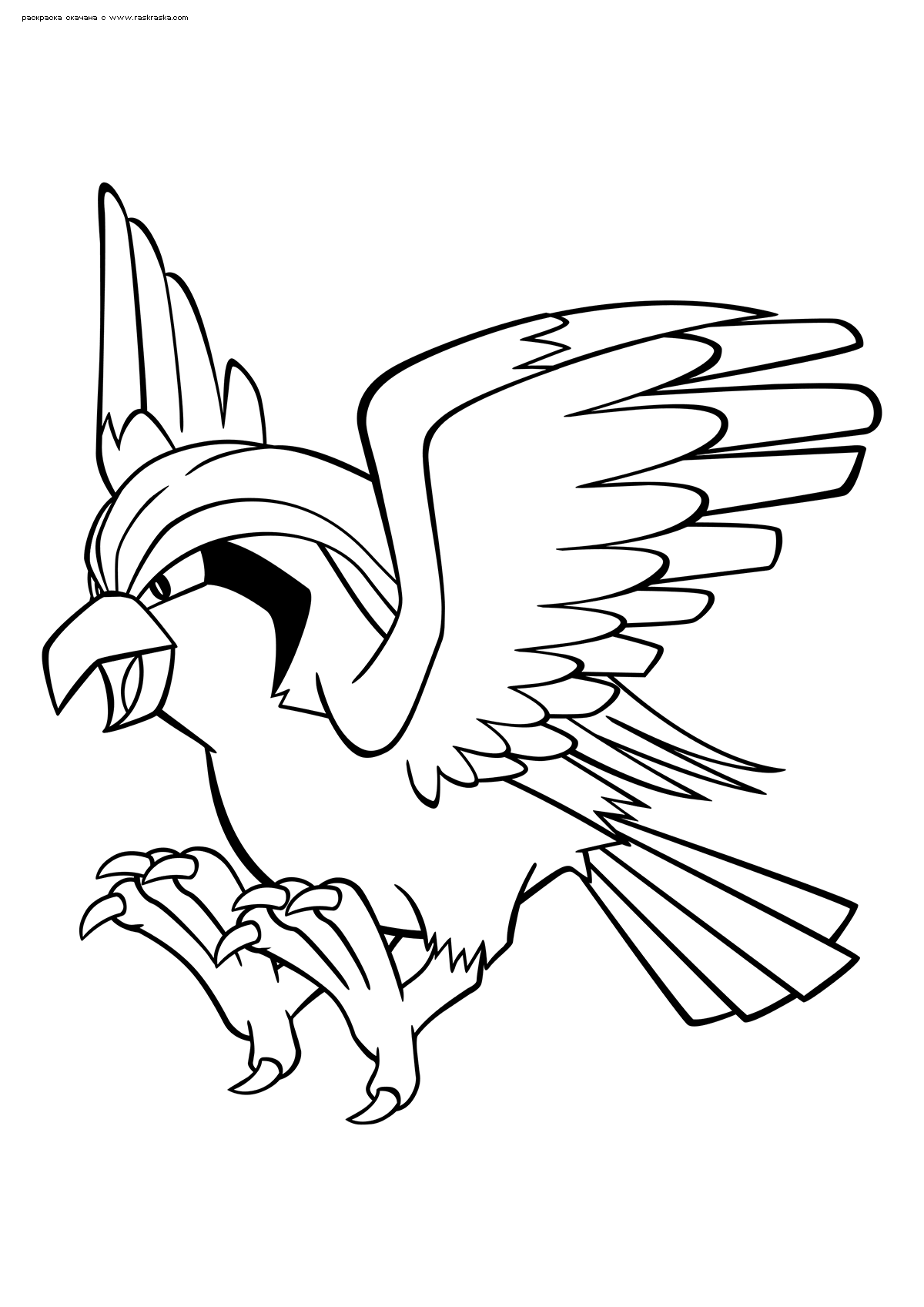 Раскраска Покемон Пиджеот (Pidgeot) | Раскраски эволюция ...