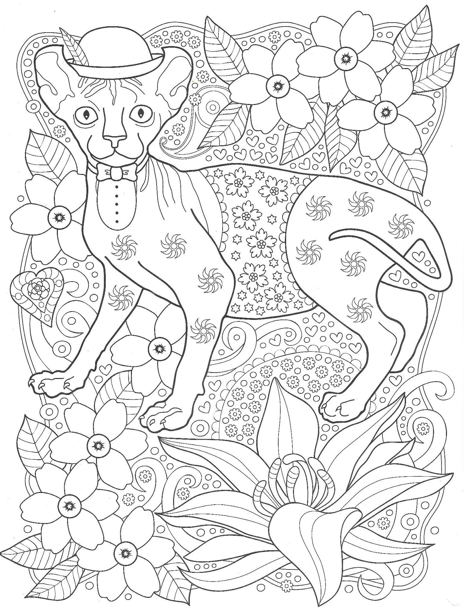 Раскраска Сфинкс в шляпе | Раскраски антистресс Кошки ...