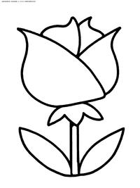 Роза - скачать и распечатать раскраску. Раскраска роза, цветок
