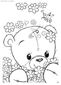 Медвежонок с ромашками - скачать и распечатать раскраску. Раскраска мишка, медвежонок