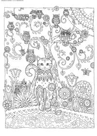 Кошка и совы - скачать и распечатать раскраску. Раскраска кошка, антистресс