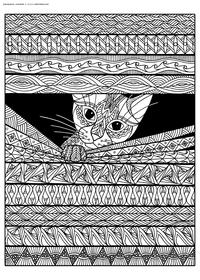 Любопытный кот - скачать и распечатать раскраску. Раскраска антистресс, кот