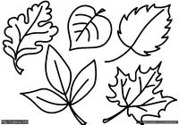 Листья - скачать и распечатать раскраску. Раскраска Простая раскраска для малышей листочки с деревьев, распечатать раскраску для малышей бесплатно