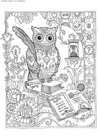 Библиотека - скачать и распечатать раскраску. Раскраска сова, антистресс