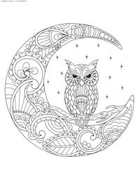Сова и месяц - скачать и распечатать раскраску. Раскраска сова, месяц, антистресс