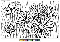 Цветы и бабочки - скачать и распечатать раскраску. Раскраска по номерам