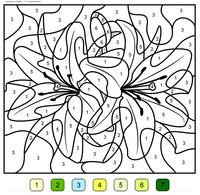 Лилия - скачать и распечатать раскраску. Раскраска по номерам, цветок
