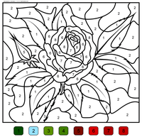 Роза - скачать и распечатать раскраску. Раскраска роза, по номерам, цветок