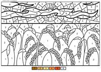 Спелые колосья - скачать и распечатать раскраску. Раскраска по номерам, пшеница