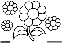 Цветок - скачать и распечатать раскраску. Раскраска Простая раскраска цветок для малышей, бесплатные раскраски для малышей
