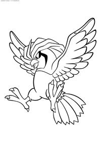 Покемон Пиджеотто (Pidgeotto) - скачать и распечатать раскраску. Раскраска Пиджеотто - покемон двух типов: Нормальный и Летающий. Эволюционирует из покемона Пиджи на 18 уровне. Эволюционирует в покемона Пиджеот на 36 уровне