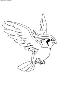 Покемон Пиджеот (Pidgeot) - скачать и распечатать раскраску. Раскраска Покемон