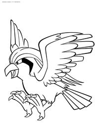 Покемон Пиджеот (Pidgeot) - скачать и распечатать раскраску. Раскраска Пиджеот - покемон двух типов: Нормальный и Летающий. Эволюционирует из покемона Пиджеотто на 36 уровне