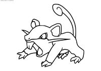 Покемон Раттата (Rattata) - скачать и распечатать раскраску. Раскраска Покемон-крыса. Раттата - покемон Нормального типа. Эволюционирует в покемона Ратикейт на 20 уровне