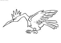 Покемон Фироу (Fearow) - скачать и распечатать раскраску. Раскраска Фироу - покемон двух типов: Нормальный и Летающий. Эволюционирует из покемона Спироу на 20 уровне