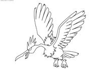 Покемон Фироу (Fearow) - скачать и распечатать раскраску. Раскраска Фироу - покемон двух типов: Нормальный и Летающий.<br>Эволюционирует из покемона Спироу на 20 уровне