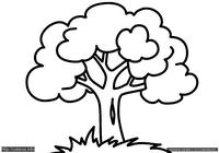 Дерево - скачать и распечатать раскраску. Раскраска Раскраска дерево для малышей распечатать бесплатно, раскраски для малышей