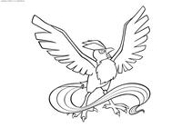 Легендарный покемон Артикуно (Articuno) - скачать и распечатать раскраску. Раскраска Покемон